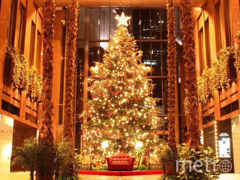 фото:fondosnavidad10.com.