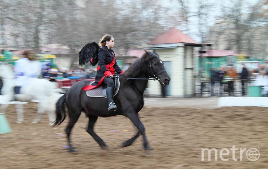 Все - предоставлены пресс-службой Ленинградского зоопарка.