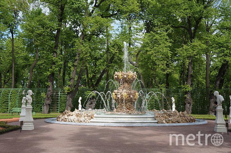 wikimedia.org/ Евгений Со.