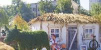 В Воронеж привезли сено и организовали селфи в съедобных платьях