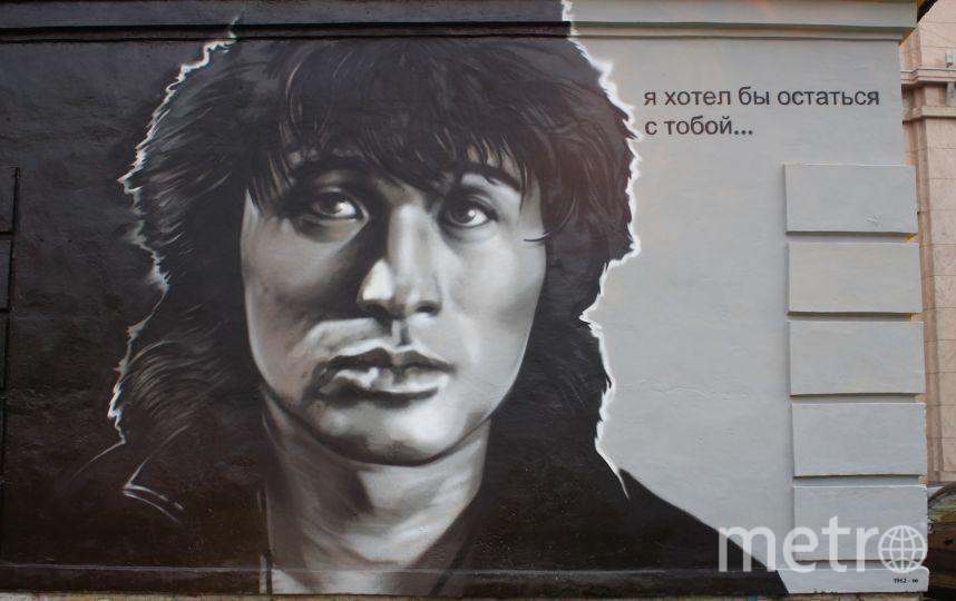 Анастасии Шевченко.