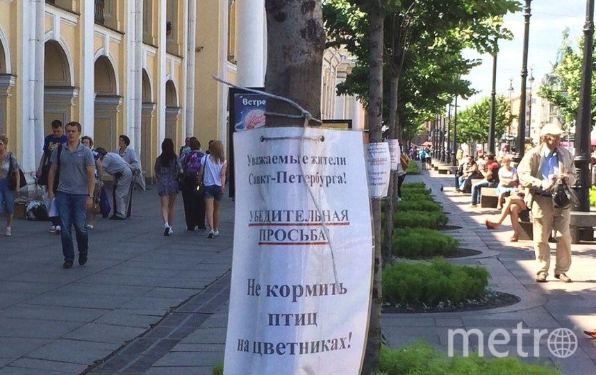 Елена Васильевна Ковзалова.
