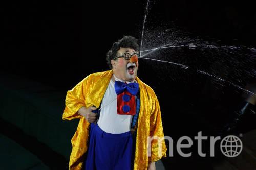 www.circus.spb.ru.