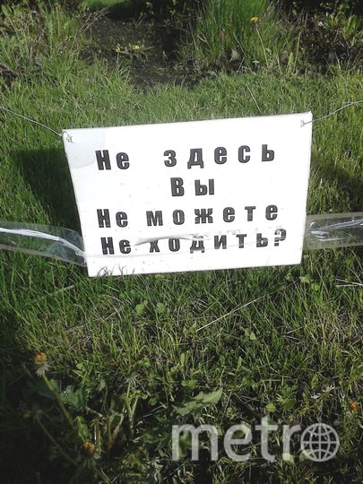 Дьячкова Людмила Леонидовна.