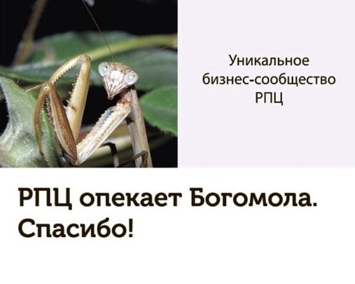 Пресс-служба Юрия Дегтярёва.