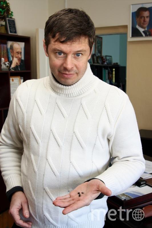 Metro/Николай Середин.