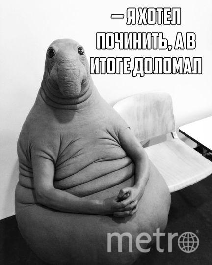 . vk.com.