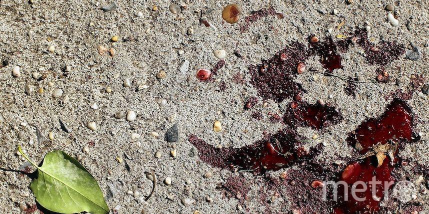 ДНК-экспертиза подтвердила, что найденные останки принадлежат 7-летнему Кириллу У.