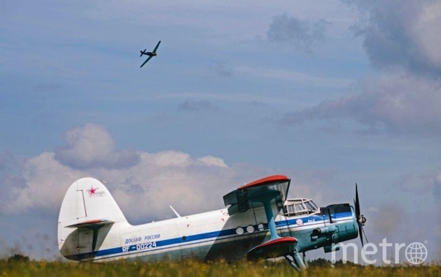 Ан-2. Фото РИА Новости