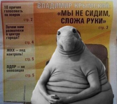 Пухлый Ждун меняет профессию. Фото Facebook