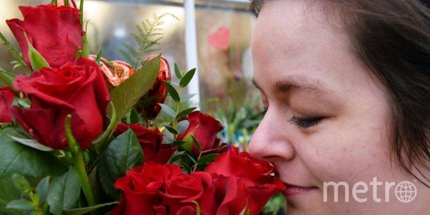 Ужительницы США обнаружили смертельную аллергию насекс