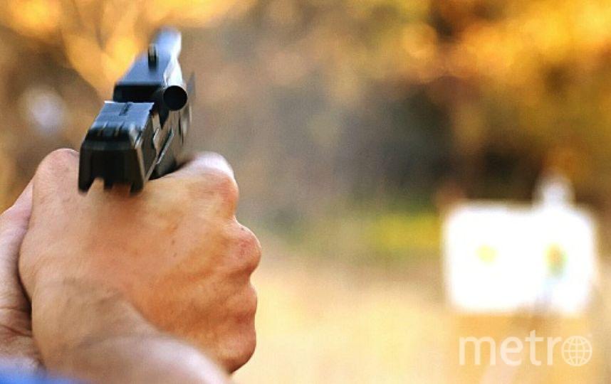 Суд счел, что выстрел из пневматики не является жестоким обращением с животным. Фото Getty