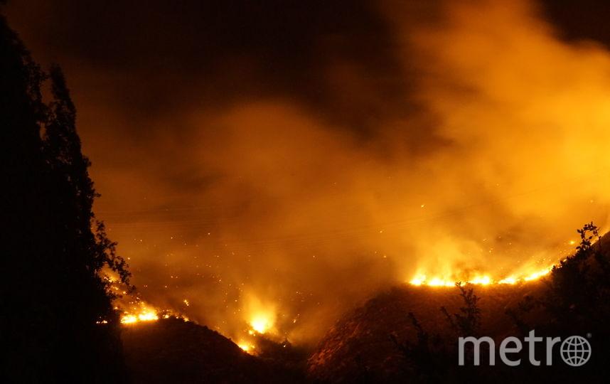 Лесные пожары в Чили. Фото Wikipedia