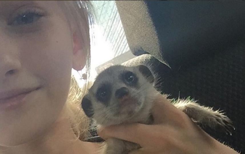 Сёма и Олеся. Фото Скриншот Instagram/olescaivanova