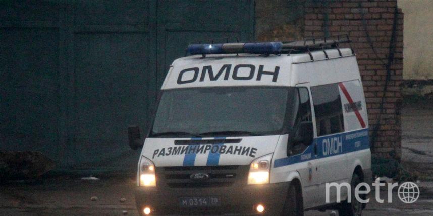 Ваэропорту Пулково впосылке отыскали мину