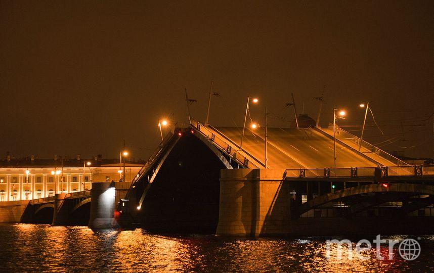 Биржевой мост в Петербурге будет разведен два дня. Фото Википедия/wikipedia.org