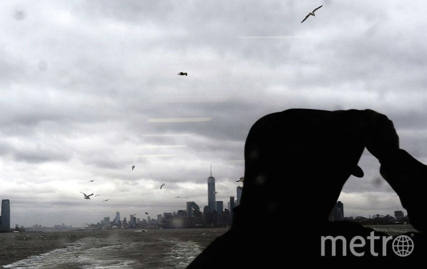 Морские губки переживут апокалипсис. Фото Getty