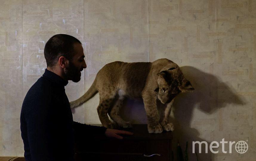 "Светская львица Легенда готовится к реалити-шоу. Фото Алена Бобрович, ""Metro"""