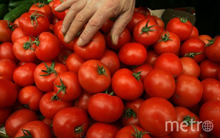 В Петербург не пропустили томаты с опасным вредителем. Фото Getty