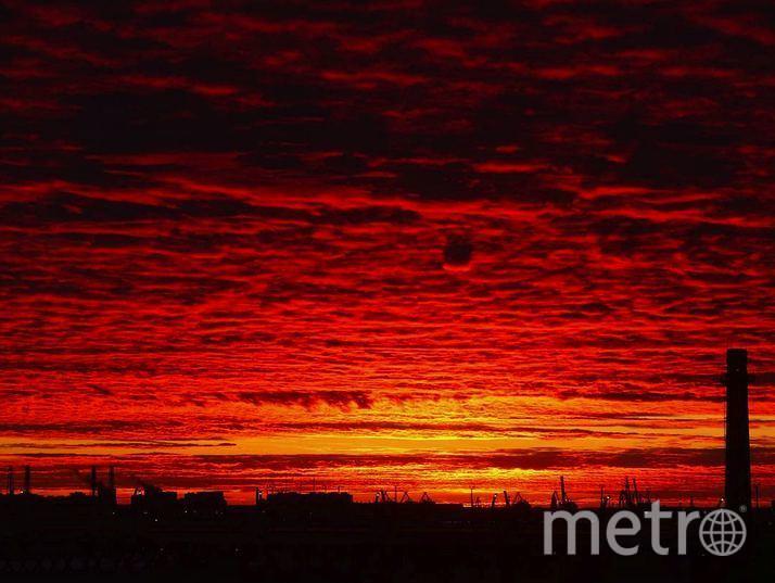 Пользователи Сети обсуждают кроваво-красный закат. Фото Скриншот/Instagram:oktavista
