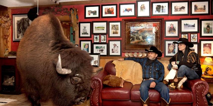 Супруги изТехаса сделали изгигантского бизона домашнее животное
