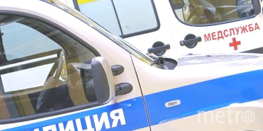Петербуржец избил девушку-фельдшера «скорой», которая оказывала помощь его другу