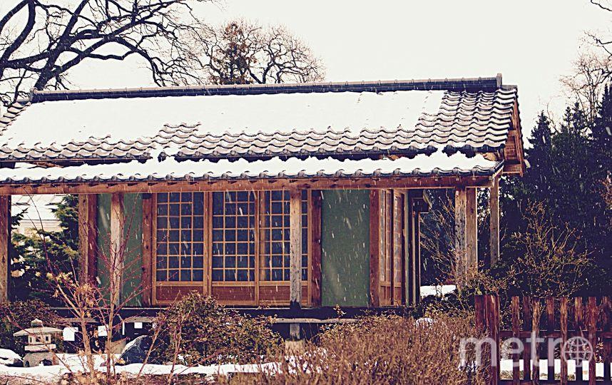 Фото: vk.com/jp_lectorium / Дарья Дудина. Фото vk.com