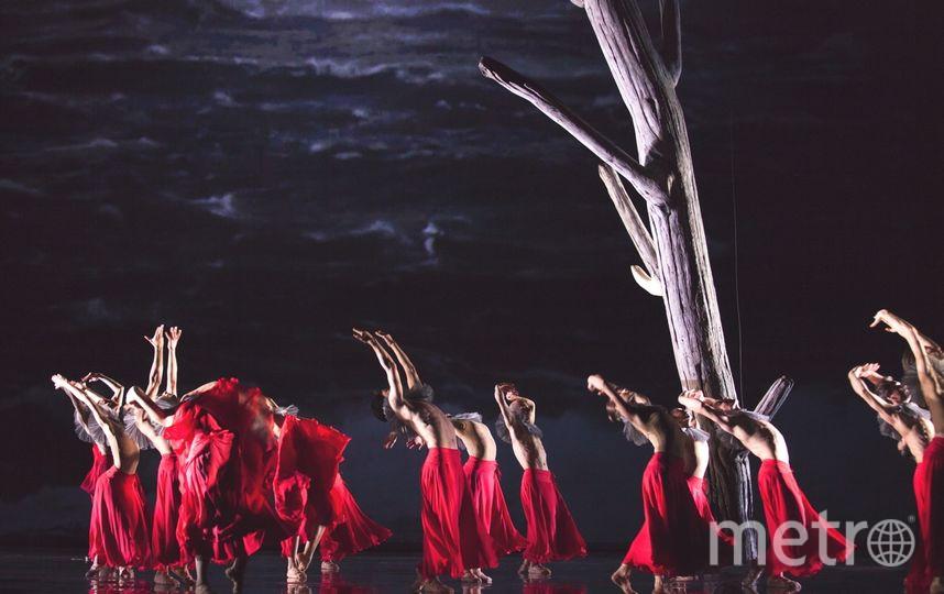 """19 апреля DANCE OPEN представит российскую премьеру """"Бури"""". Фото DANCE OPEN"""