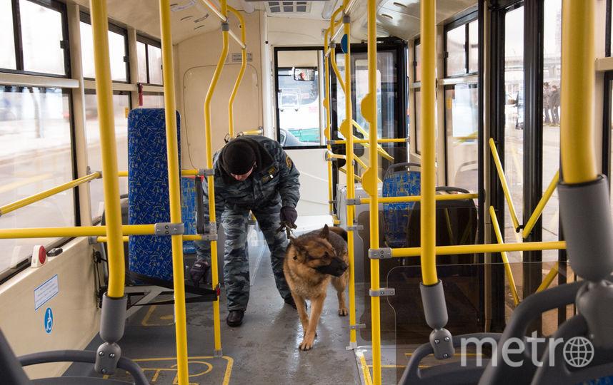 "Проверка транспорта. Фото Святослав Акимов, ""Metro"""