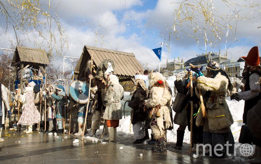Войны зимы. Фото Василий Кузьмичёнок