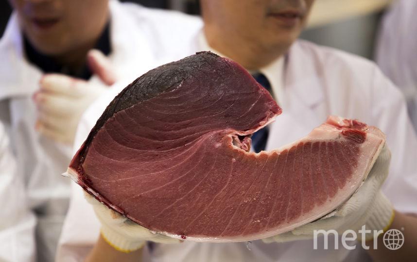 Россельхознадзор задержал партию консервированного тунца впорту Петербурга