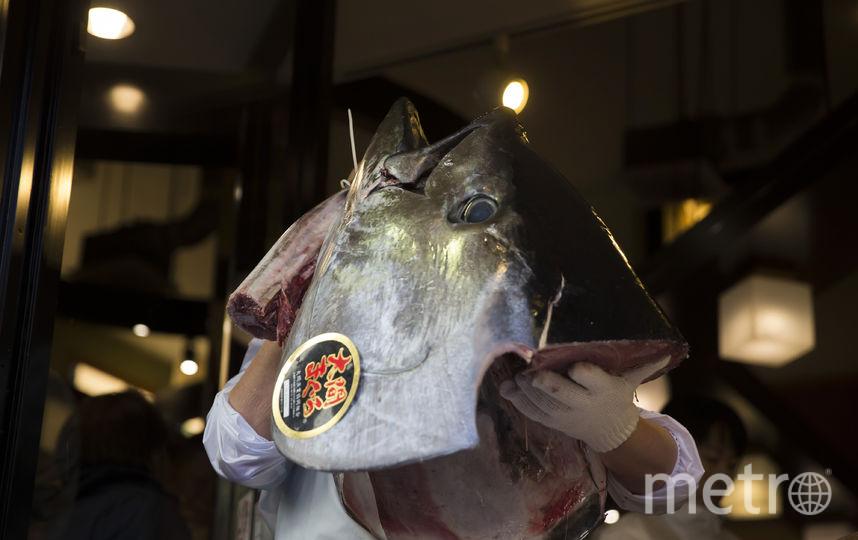 В Петербургском порту замерзли порядка 15 тонн тунца. Фото Getty
