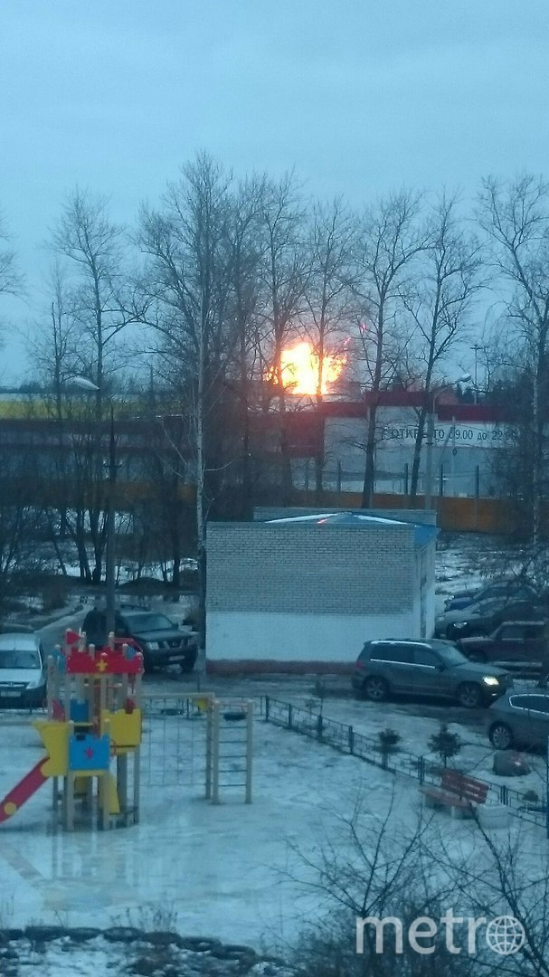 Пожар на газопроводе в Гатчине произошел утром 2 марта. Фото vk.com
