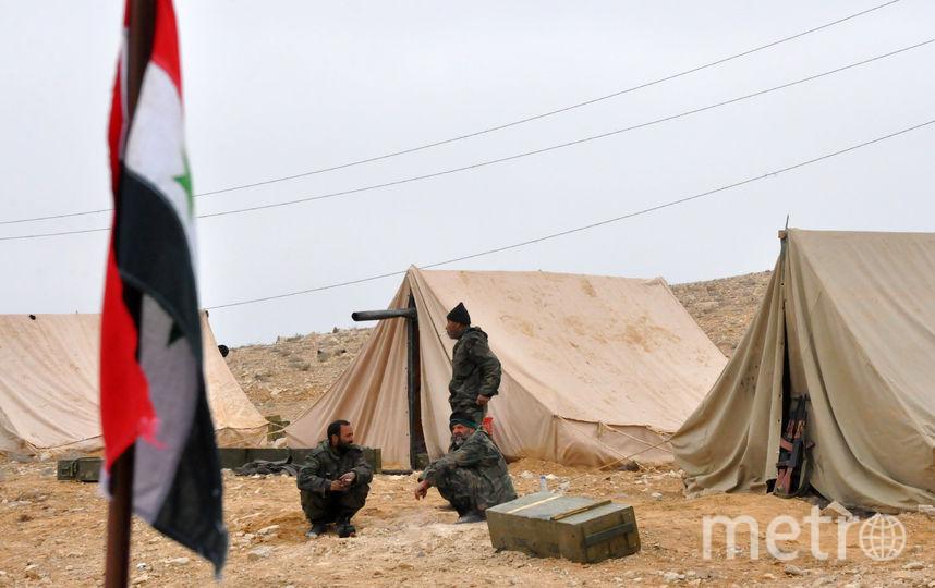 Сирийские войска в Пальмире. Фото AFP