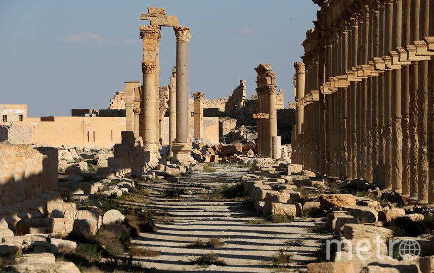 Пальмира. Фото AFP