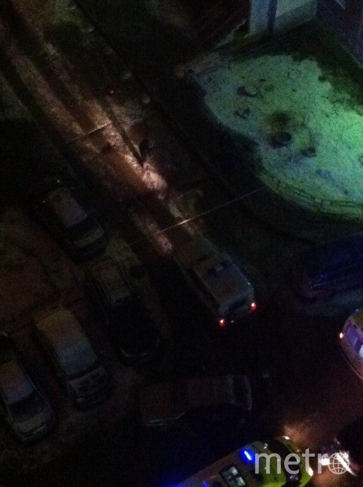 В Петербурге неизвестные расстреляли мужчину. Фото «ДТП и ЧП | Санкт-Петербург», vk.com