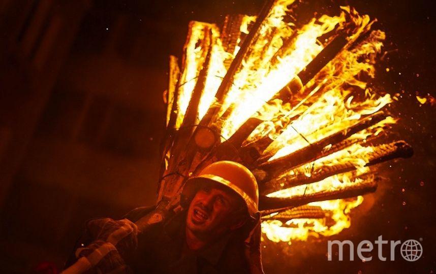 Chienbase. Фото AFP