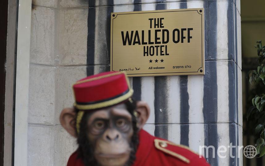 Обезьянка на входе. Фото AFP