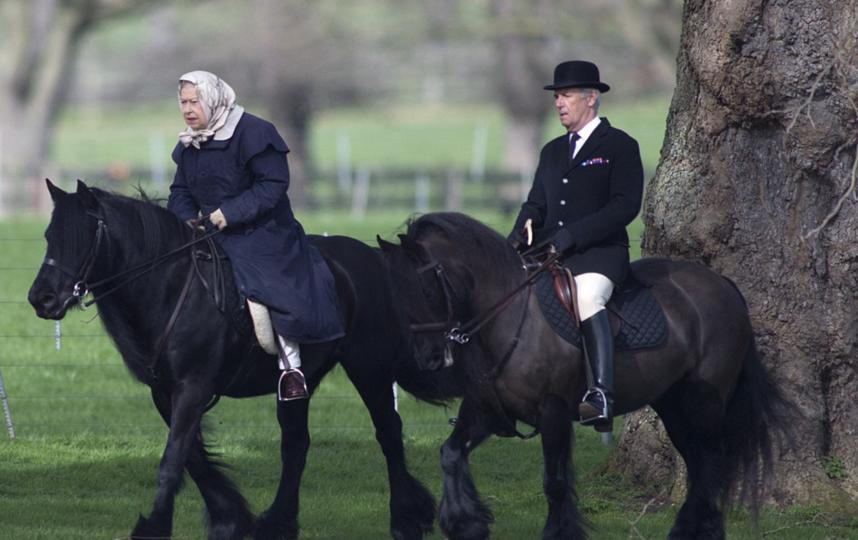 Королева Великобритании Елизавета II на конной прогулке. Фото Скринот с сайта Daily Mail.