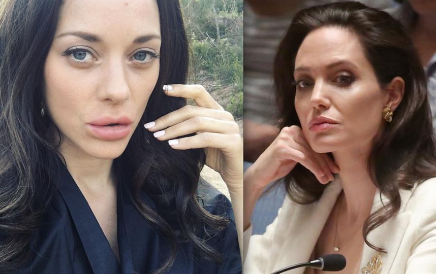 Марион Котийяр (слева) сравнили с Анджелиной Джоли.