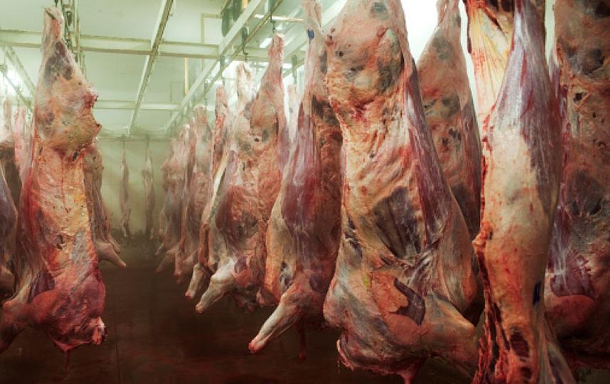 За партию несуществующего мяса петербуржец может сесть на 10 лет. Фото Getty