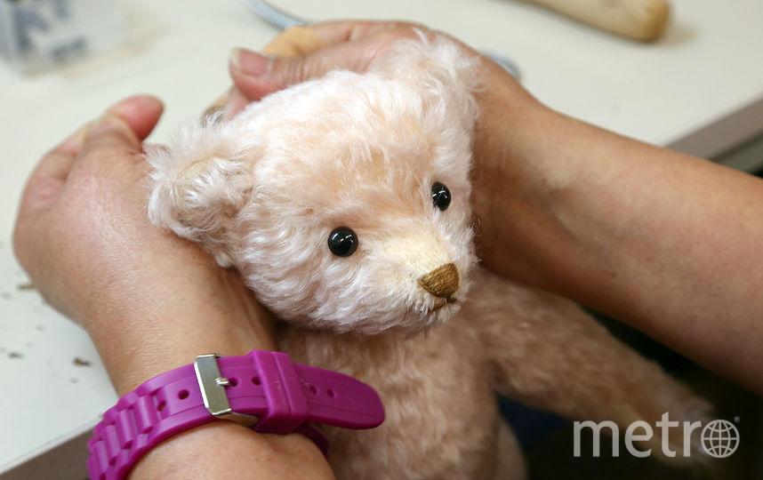 В Петербурге найден мужчина, укравший медведя с АЗС. Фото Getty