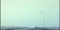Туман накрыл Санкт-Петербург и соцсети