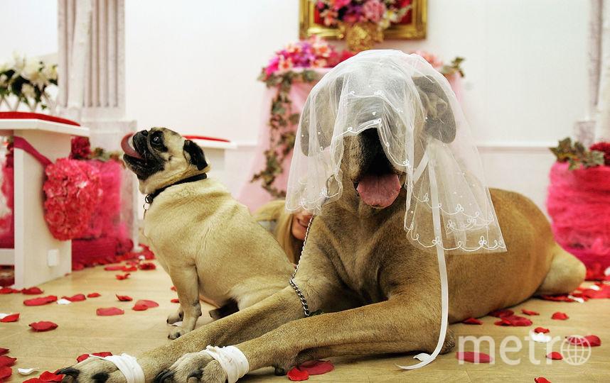 Ученые назвали идеальный возраст вступления в брак. Фото Getty