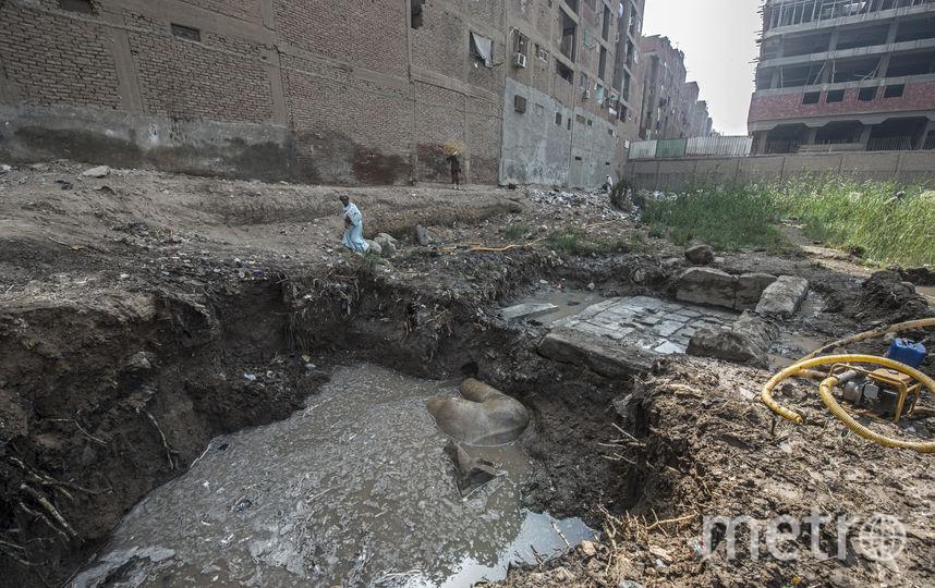 ВКаире группа археологов выкопала вторую часть статуи РамзесаII