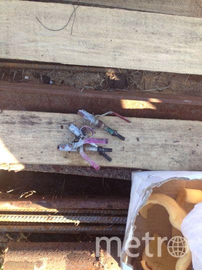 В гаражном кооперативе Петербурга найдены боевые гранаты. Фото Пресс-служба ГУ Росгвардии по СПб и ЛО