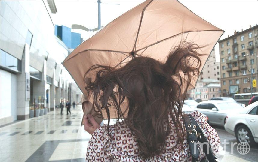 ВПетербурге вконце рабочей недели предполагается сильный ветер