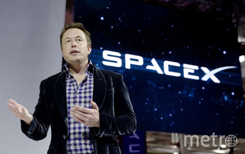 Глава компании SpaceX Илон Маск. Фото dwdw., Getty