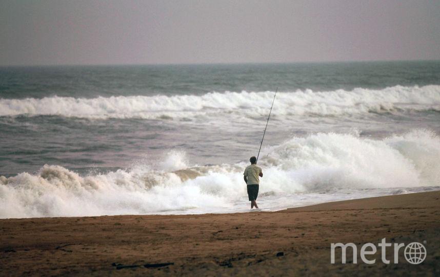 Невероятно, однако факт: через 30 лет все водоемы останутся без рыбы