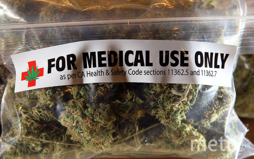 На Украине собираются выращивать лечебную марихуану. Фото Getty